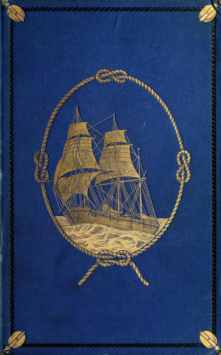 The flight of the Lapwing. A naval officer's jo...