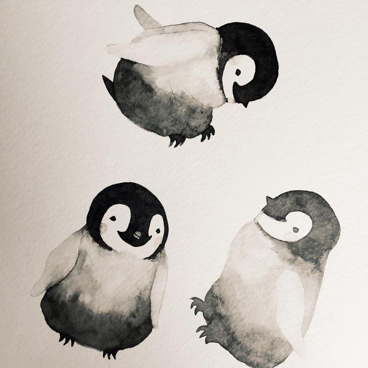 Watercolor penguins #watercolor #penguins #blackandwhite