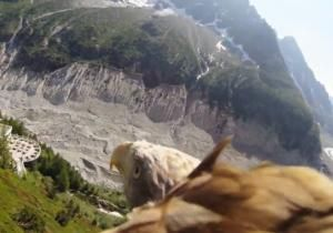 How does it feel to fly like an eagle? Stunning footage filmed from a camera attached to a soaring bird of prey's back is giving viewers the answer. YouTube's Srachi recorded the 86-second clip above the Mer de Glace area of Chamonix in the French Alps.