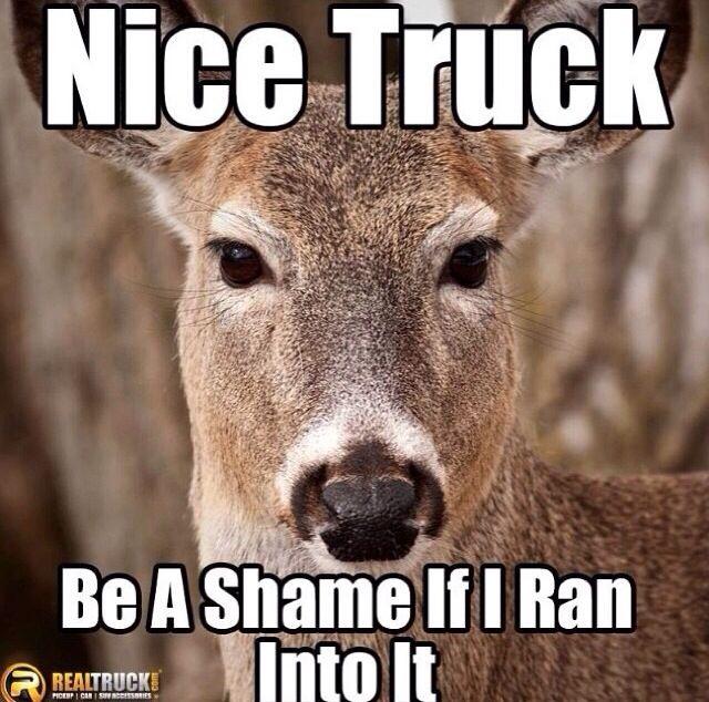 Deer dick govenor hunt