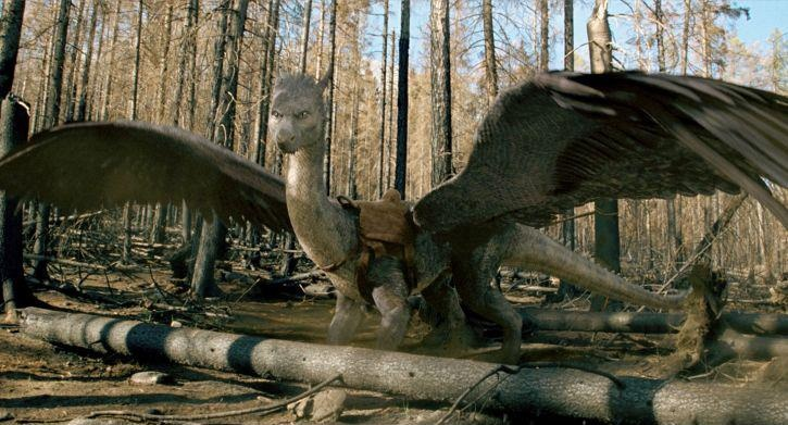 from the movie eragon hollywood dragons pinterest