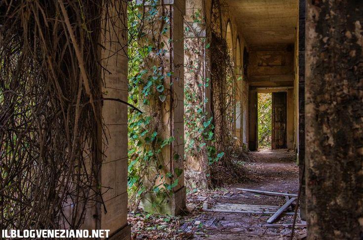 L'ospedale abbandonato nell'isola di Poveglia, Venezia.   (PH: Giacomo Martines)