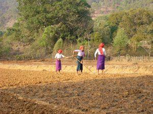 UNPO: International Women's Day: Women Fighting For Democracy In Burma