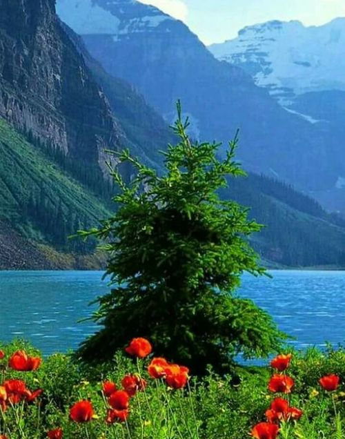 Top 10 Mind Blowing Places To Visit This Year Beautiful Landscapes Beautiful Nature Nature Photography