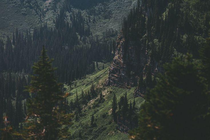 Скалистые горы, лес. Словно преодоление препятствий в окружении хвои.