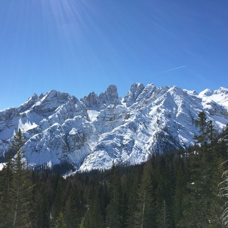 Trip to Southern Tyrol with Kur dogs...