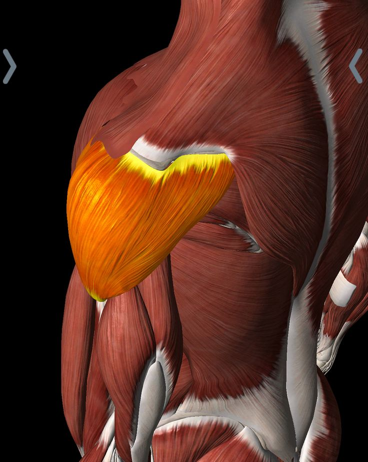 how to get rid of muscle pain in shoulders