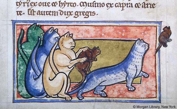 Bestiary, MS M.81 fol. 46v - Images from Medieval and Renaissance Manuscripts - The Morgan Library & Museum