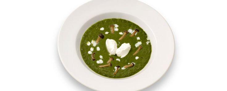 Ristorante da Miron - Cocofungo: Zuppetta verde di erbe selvatiche, piopparelli e spuma di casatella trevigiana