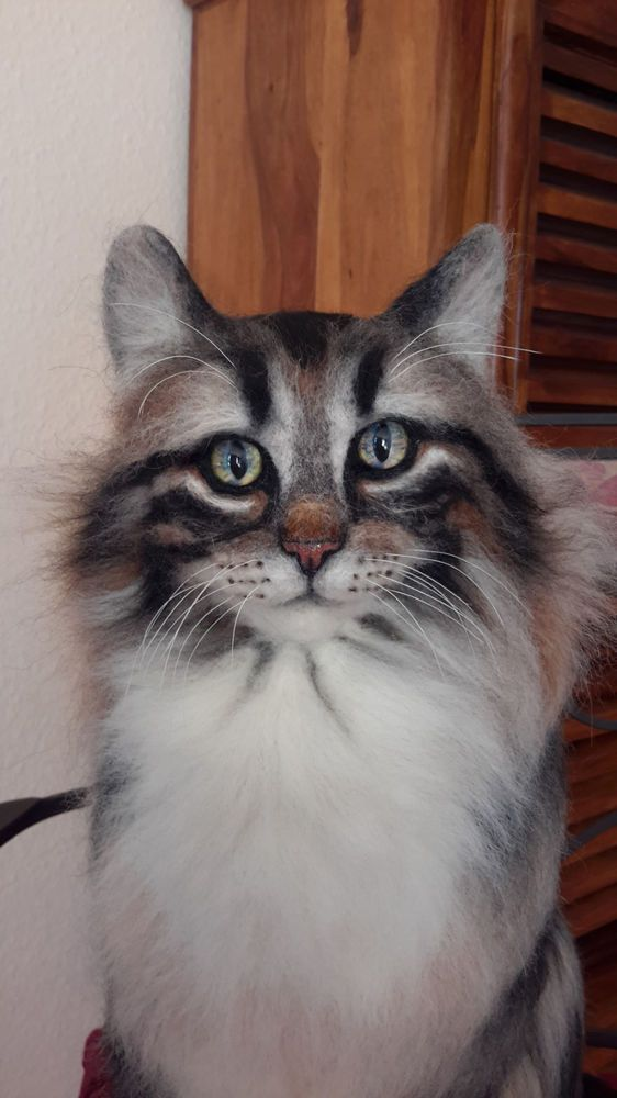 Beautiful Norwegian Forest, Realistic Looking Cat, Life-Size, Needlefelted OOAK