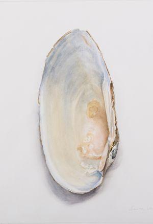 Saara Vainio: Pariton / Uneven. Watercolour, 30 x 30 cm. 2016