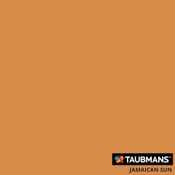 #Taubmanscolour #jamaicansun