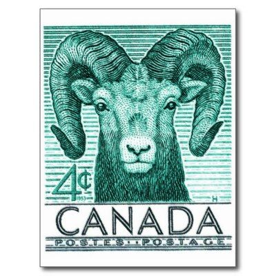 Canada Bighorn Sheep, 1953 postage stamp