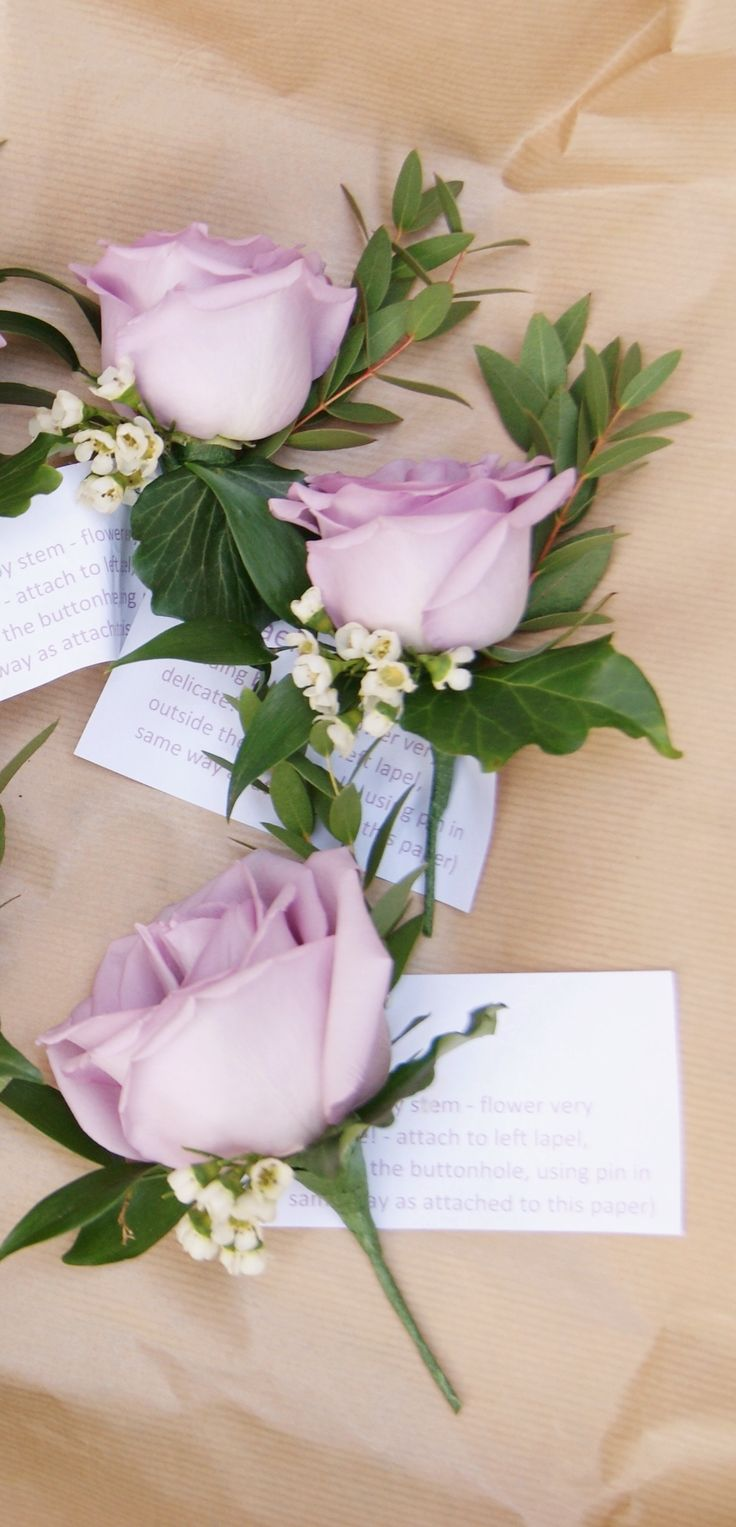 Elegant buttonholes of lavender ocean song rose and white waxflower. Florissimo, Shropshire