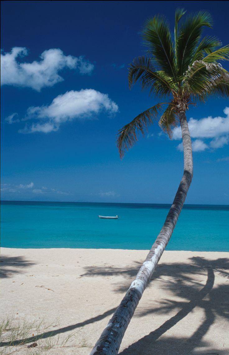 Beach, Antigua copyright: Antigua & Barbuda Tourism Authority