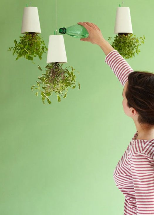 Grow indoor plants upside down with Sky Planters.  Cool different way to display plants.