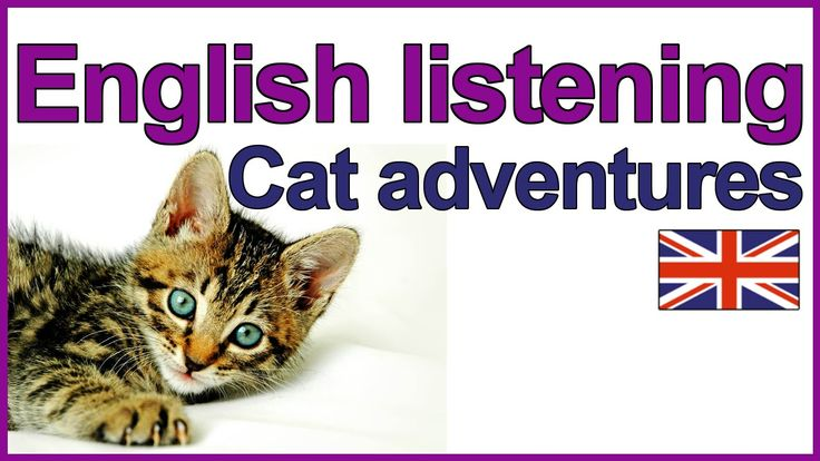 English listening exercise - Cat adventures