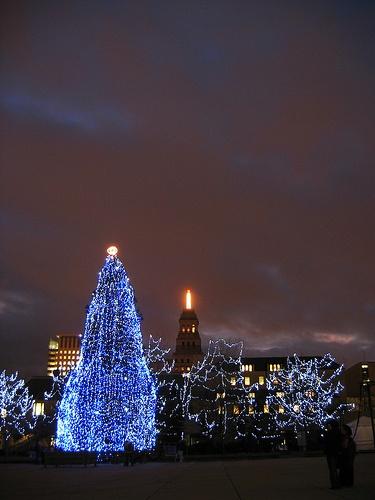 Toronto City Hall Christmas tree