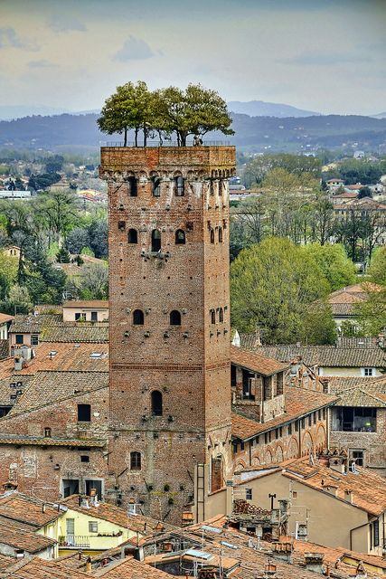 The Torre Guinigi is the most important tower of Lucca, Tuscany, central Italy. This tower is one of the few remaining within the city walls. Its main characteristic is its hanging garden on the roof of the tower.
