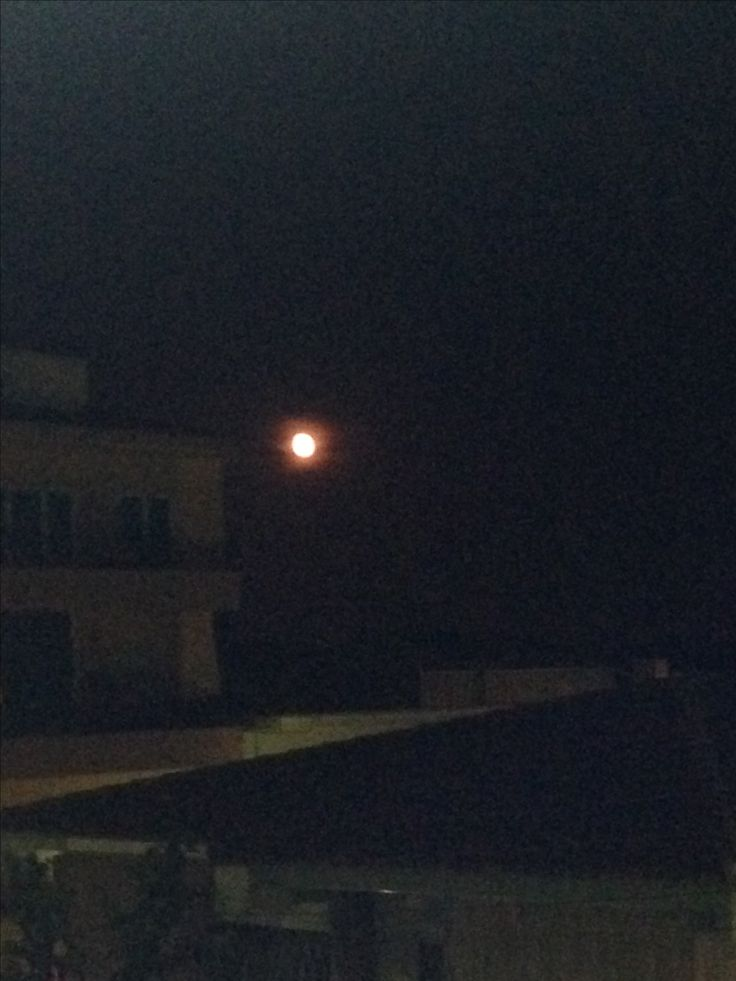 Luna naranja  📷: ~ Alba J.
