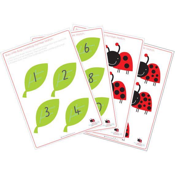 Ladybugs Number Match