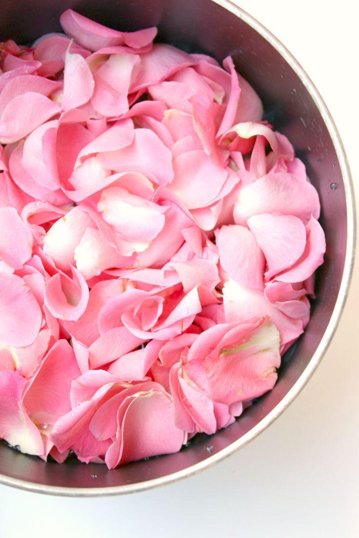Dried rose petal chinese rose flower rose tea buy rose petal - How To Make Rose Water At Home Rose Petalsrose