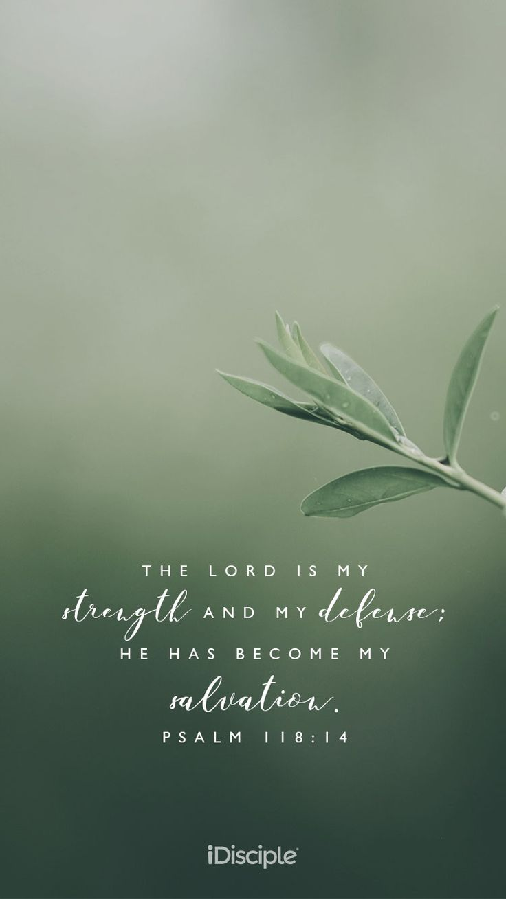 The LORD is my strength and my defense; he has become my salvation.   Psalm 118:14