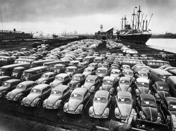 Hans Marx - First Shipment of Beetles to America, 1956 - Fine Art Print