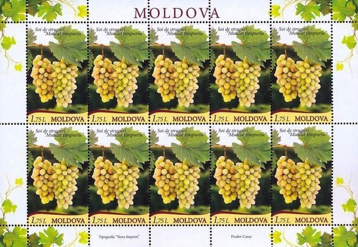 Moldova/Europe Stamps, Grapes / Fruits / Wine, 2013, MNH, 10v