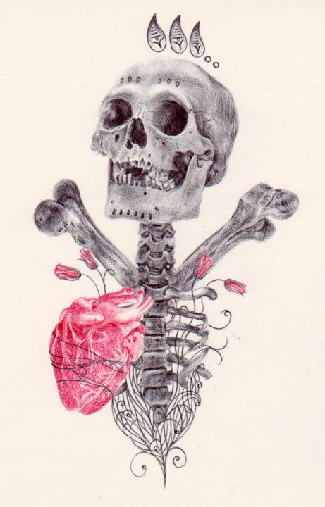 Drawing made with black and red ballpoint pens by Paul Alexander Thornton    http://www.facebook.com/PaulAlexThorntonArtists Anatomy, Ballpoint Pens, Artists Paul, Bones Art, Artists Inspiration, Skull Bon, Red Ballpoint, Paul Alexander, Alexander Thornton