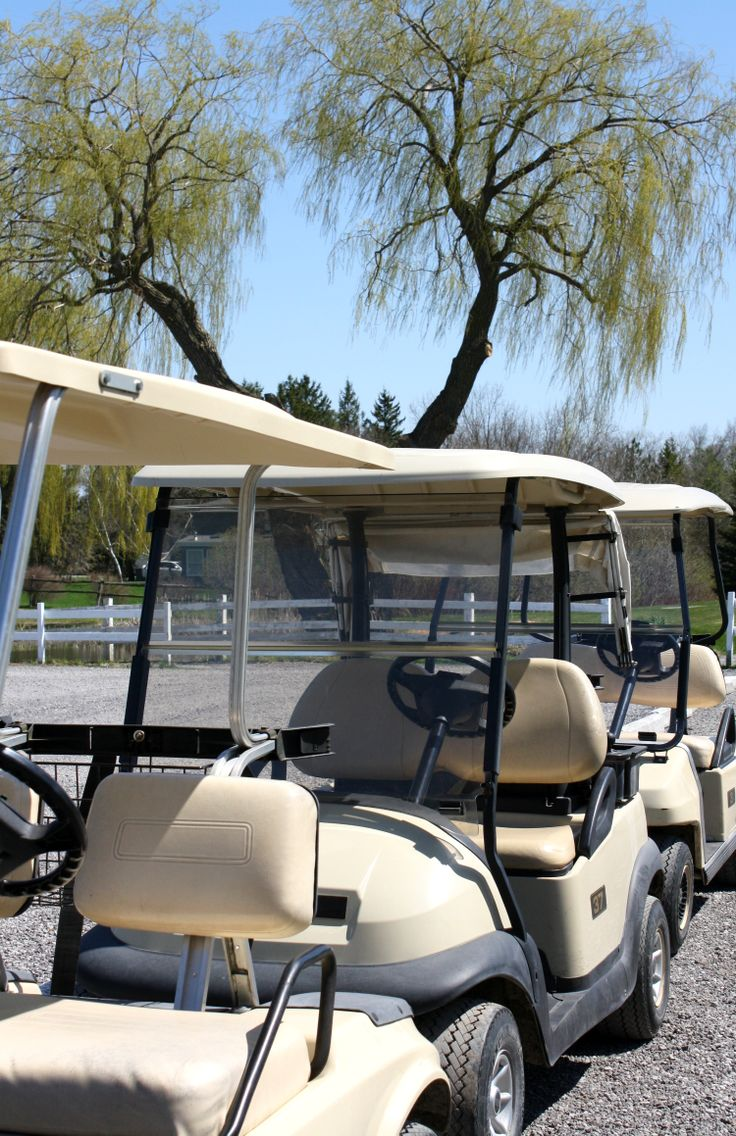 Spring has sprung, and GOLF CARTS are ready to go! Check out all of the fabulous new things happening at Sunnybrae Golf Club in beautiful Port Perry, ON.