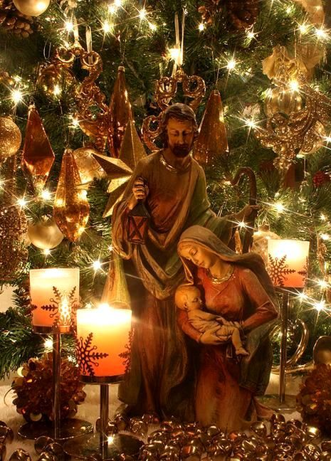 Nativity Under The Tree Beautiful Christmas
