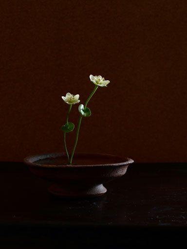 Ikebana design Asian style flower arrangement