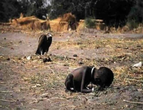 This contrast of a plump vulture and a starving, emaciated Sudanese girl is striking, alarming and won the photographer, Kevin Carter, a Pulitzer Prize for feature photography. The girl was on her way to a feeding center, when she collapsed.   When asked about the fate of the girl, Kevin Carter said that she resumed her trek to the center, while he chased away the vulture. However, he added, that it is unlikely she survived.