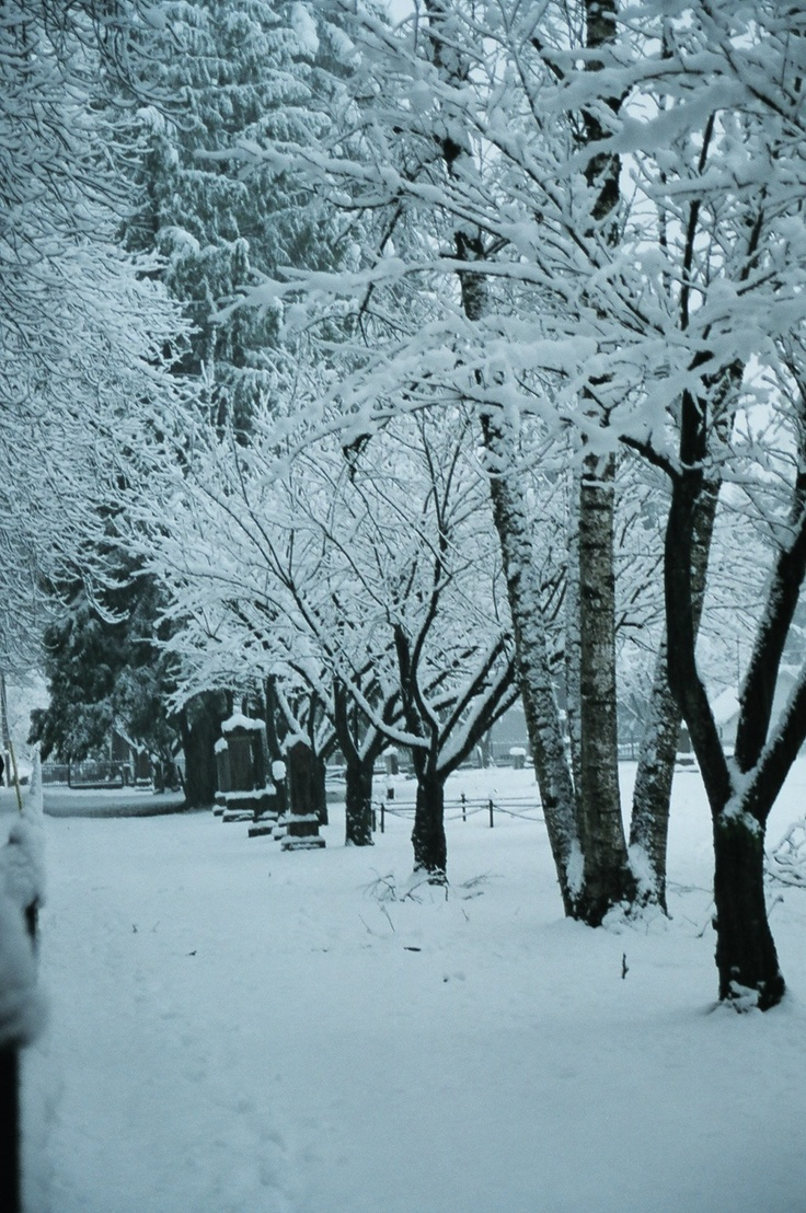 Fort Langley BC snowy graveyard - RC photograph