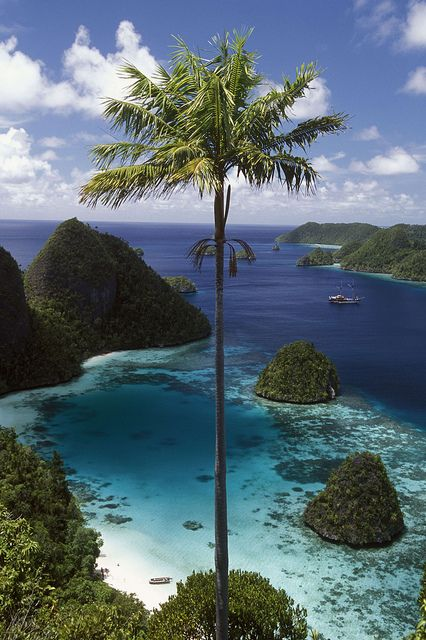 Wayag Islands, Papua, Raja Ampat, Indonesia. The Wayag Islands, part of the Raja Empat Island Group off NW Papua (New Guinea Island), are some of the most beautiful in the world. Although rarely visited in the past, these amazingly beautiful islands are being considered as a possible Indonesian National Park and by UNESCO as a World Heritage Site.