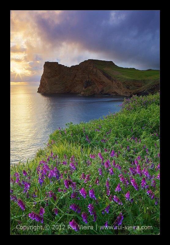 Ilha de São Jorge - Açores
