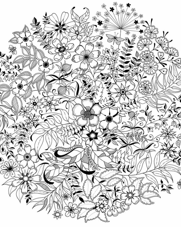 secret garden an inky treasure hunt and colouring book - Buscar con Google