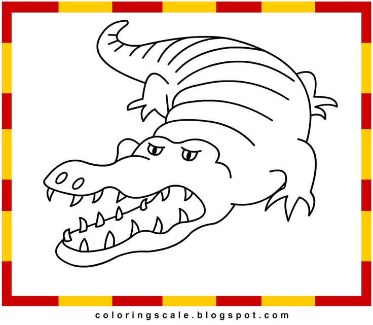 Epic Gator Coloring Pages 27 Coloring Pages Printable for