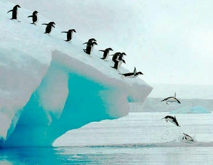 Antarctica ... Must save pennies to take jeff!!