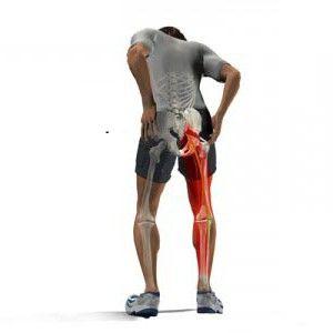 Основным показателем того, что имеет место воспаление грушевидной мышцы, считается ноющая и тянущая боль в тазобедренном суставе и голени, усиливающаяся при ходьбе и стихающая в положении лежа. Особенно неприятные ощущения при этом возникают в самой ягодице. Немного облегчить свое состояние больной может также в положении сидя с несколько разведенными коленками.
