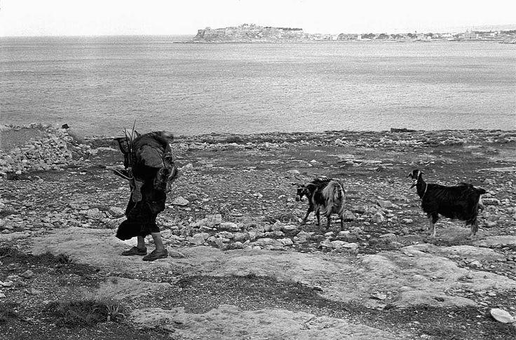 Αγρότισσα στο Ρέθυμνο,στο βάθος το Ενετικό λιμάνι 1955