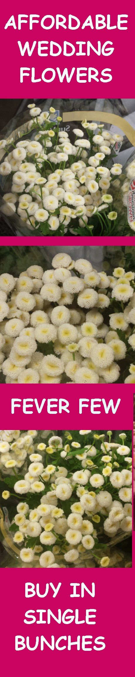 wholesale wedding flowers easy step by step free flower tutorials learn how to make bridal