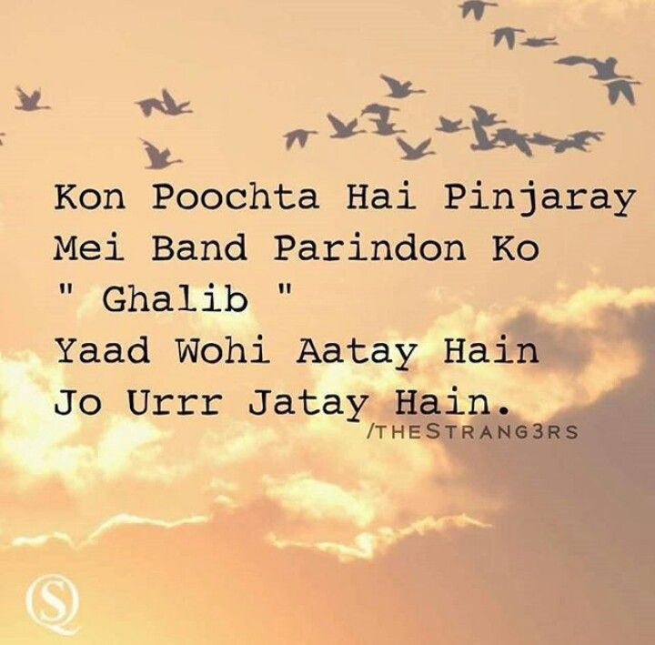 'Who asks the birds in the cages Ghalib,the only ones remembered are those flown away.'~Ghalib