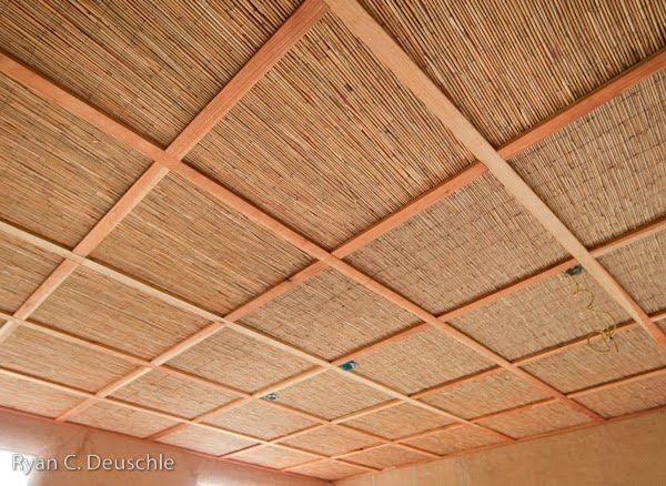 Ideas For Lanai Ceiling For The Home Dropped Ceiling
