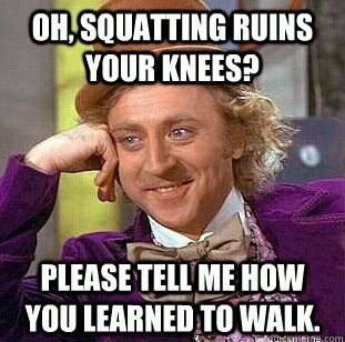 lawlz: Quotes Funny, Hate Squats, Fit Fun, Fit Junkie, Crossfit Humor, Funny Stuff, Fashion Fit