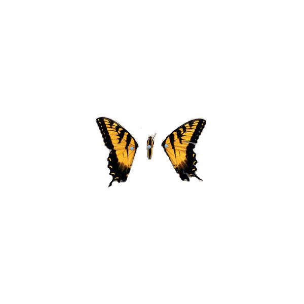 Brand New Eyes ❤ liked on Polyvore featuring paramore, fillers, backgrounds, butterflies and brand new eyes