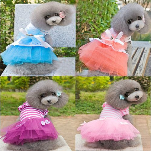 New Small Dog Clothes Cute Pet Dog Tutu Dress Lace Skirt Cat Princess Clothes