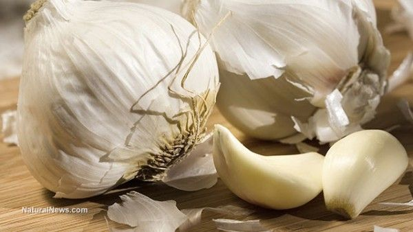 Garlic, honey and apple cider vinegar: Powerful natural mixture against indigestion, obesity https://blogjob.com/healthyfoodblogs/2017/01/21/garlic-honey-and-apple-cider-vinegar-powerful-natural-mixture-against-indigestion-obesity/