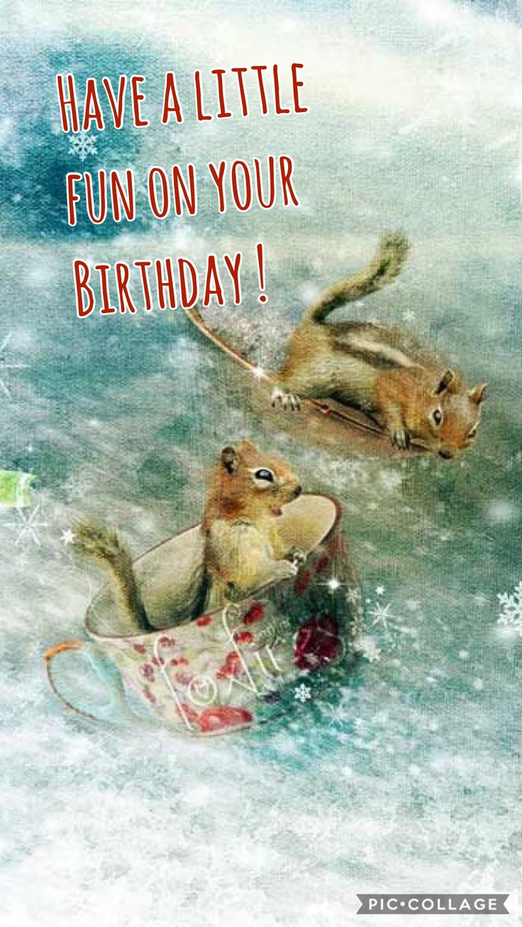 920 best birthday memes images on pinterest happy birthday birthday sentiments happy birthday memes birthday funnies happy birthday greetings happy birthday quotes birthday board card birthday birthday wishes kristyandbryce Choice Image